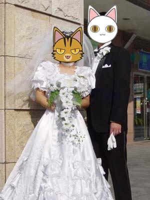 cat1749