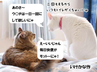 cat1795