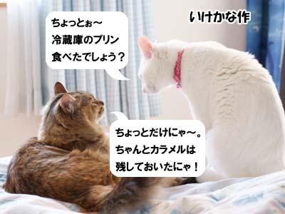 cat1799