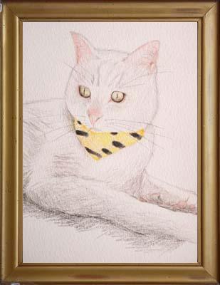 cat1846