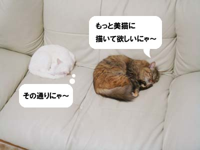 cat1850