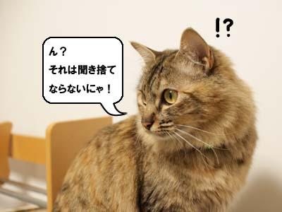 cat1871