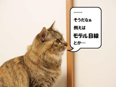 cat1872