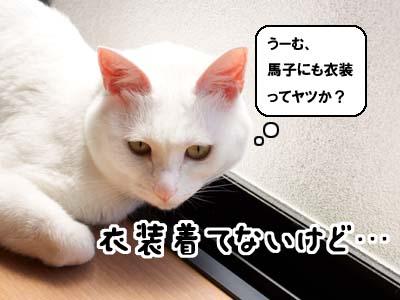 cat1874