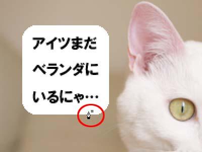 cat1915