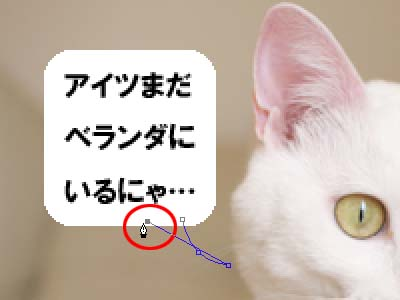 cat1919
