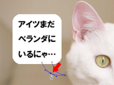 cat1920