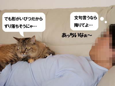 cat2001