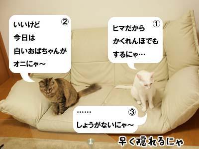 cat2034