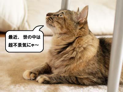cat2112