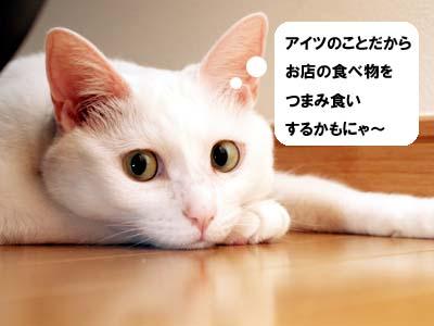 cat2116