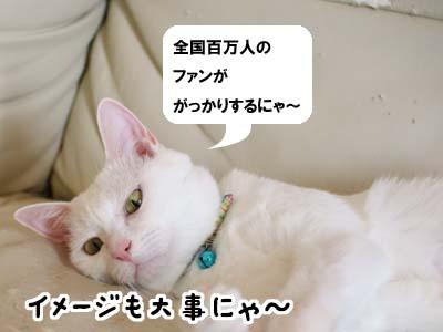 cat2171