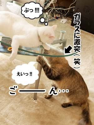 cat2175