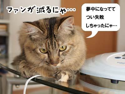 cat2176