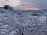 雪の朝焼け