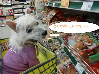 004_20101029192052.jpg