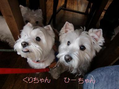 022_20120320215948.jpg