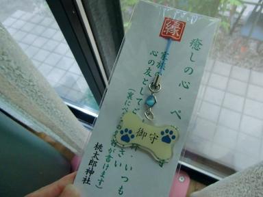 055_20110810095212.jpg