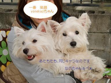 098_20110501234619.jpg