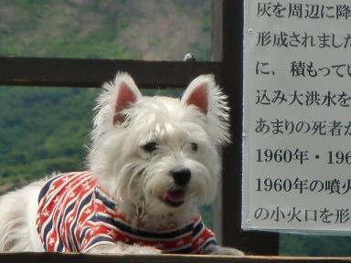 クララと那須山