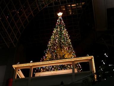 駅ビルクリスマスツリー
