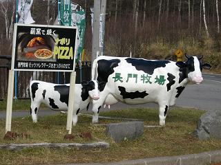 長門牧場の牛さん