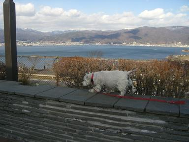 諏訪湖とクララ②