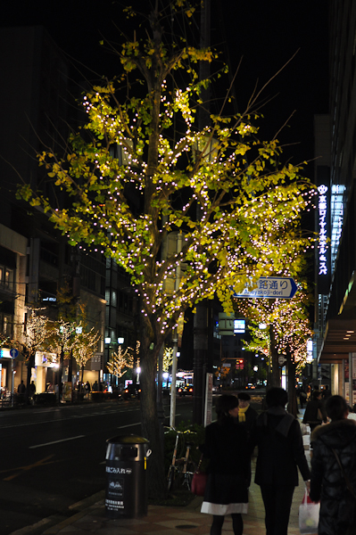 20101207_44.jpg