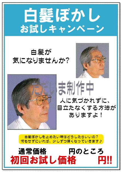 20110115_1.jpg