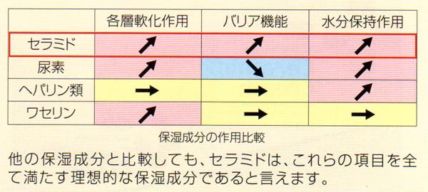 20110205_4.jpg
