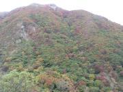 山頂から降りてきた谷