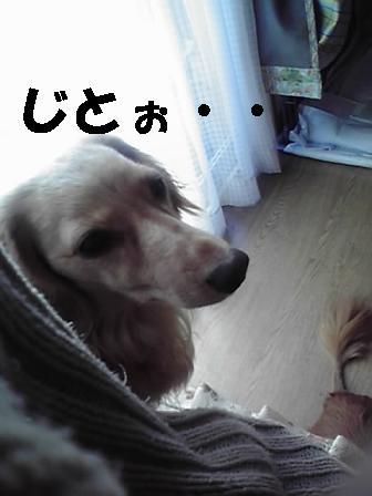 けりこ39
