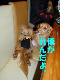nana&ren&bisin
