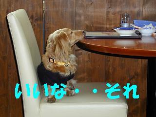 けりこ46