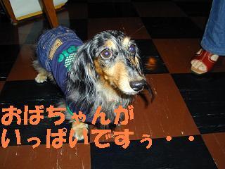杏ちゃん2