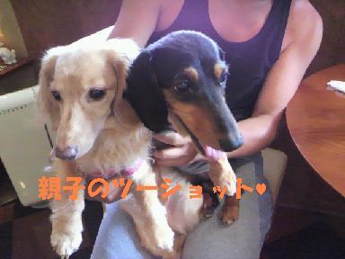 ランディ&ケリー2