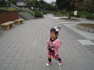 IMG_3239_20101027160849.jpg