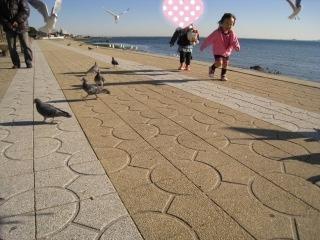 getpicure_20101209151836.jpg