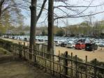 景色 2011年4月11日 三ツ池公園2