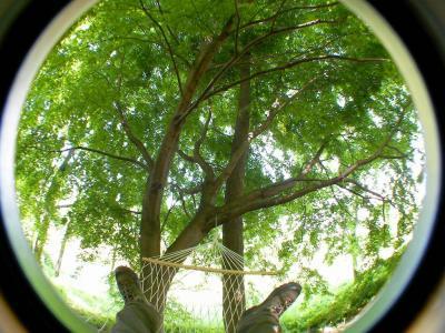 SANY0865_20100509211637.jpg
