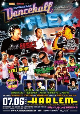 D-Flexx7.jpg