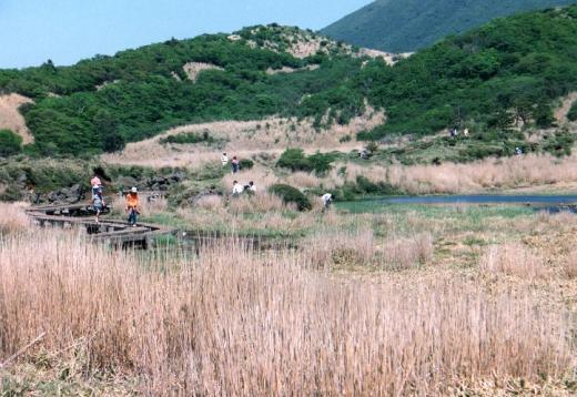amagaike041.jpg