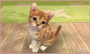 nintendogscats2