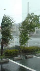 異常気象3