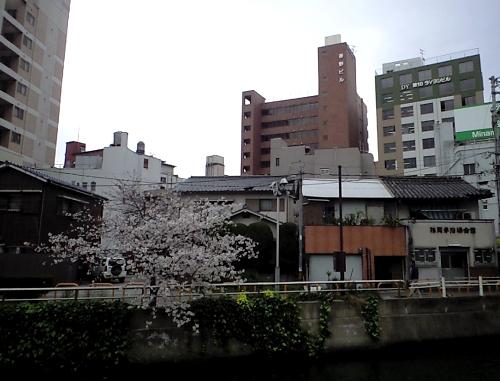 20100404poi.jpg