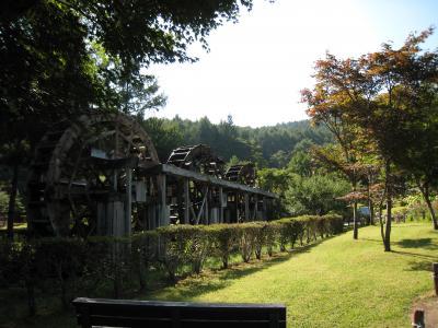 yamanakako-6