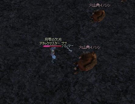 2009022201.jpg