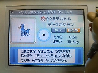 090210p.jpg
