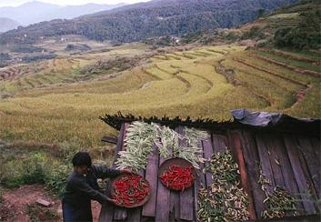 bhutan_rooftop-drying-food.jpg
