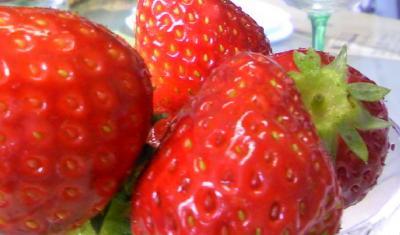 freshberry2.jpg